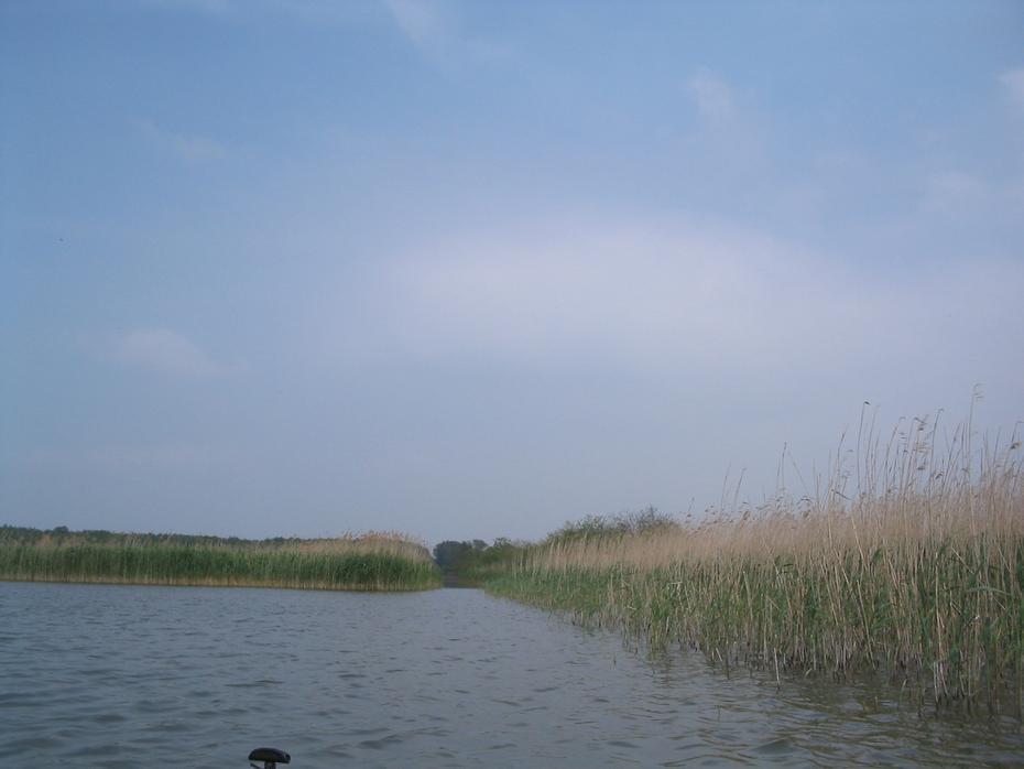 Ausgang aus dem Malchiner See