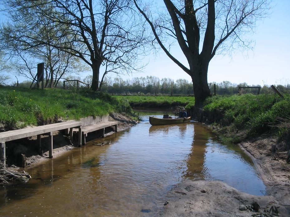 Mündung der Heilsau in die Trave bei Reinfeld