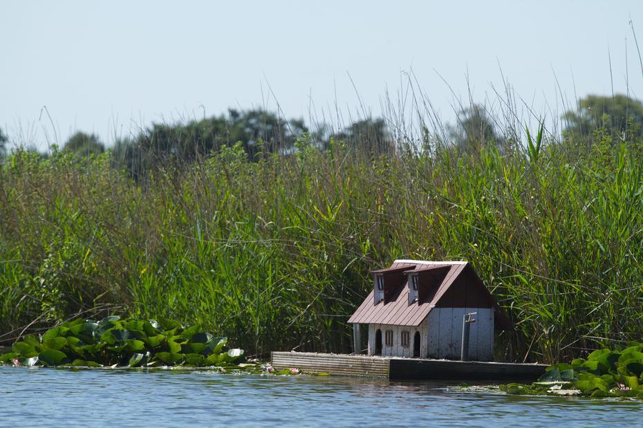 Wohnschiff für Enten