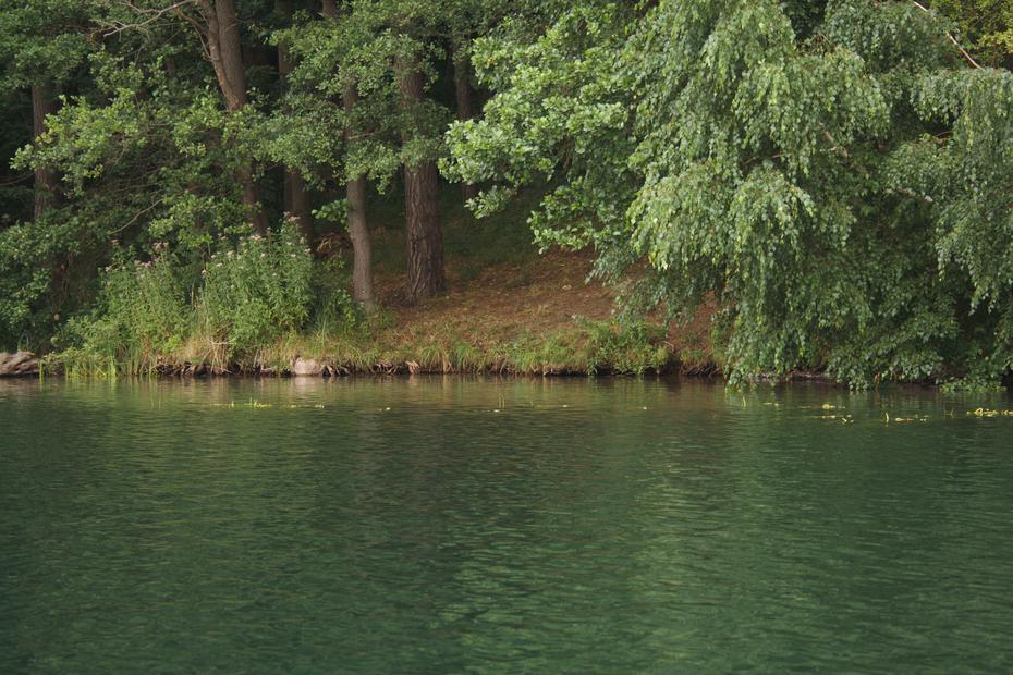 Ufer am Schmalen Luzin