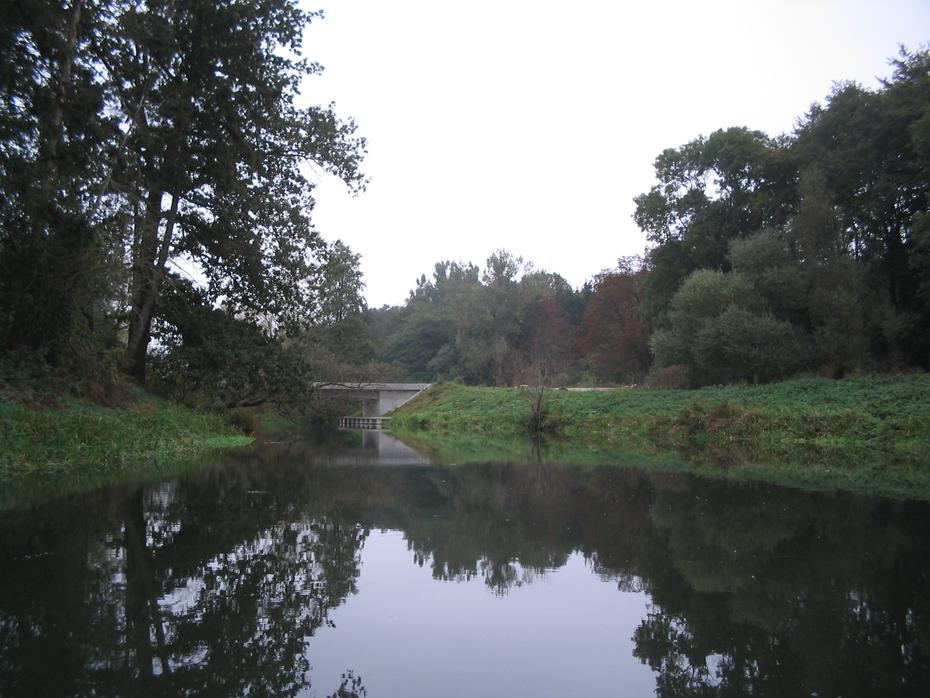 Tollense, Brücke bei Roidin