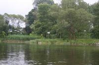 Havel bei Albertsheim