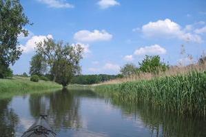 Uecker unterhalb Torgelow