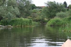 Havel Nebengewässer bei Nitzow