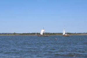 Schlei, Wikingerboot bei Reesholm