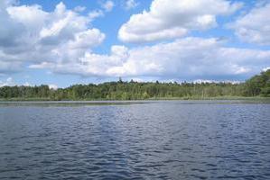 Borkower See