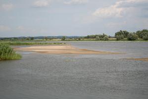 Die Stromoder bei Hohensaaten bei niedrigem Wasserstand