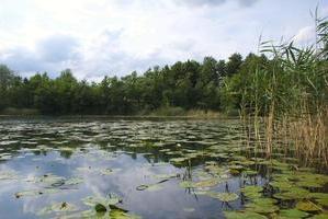 Der Kleine Mechowsee
